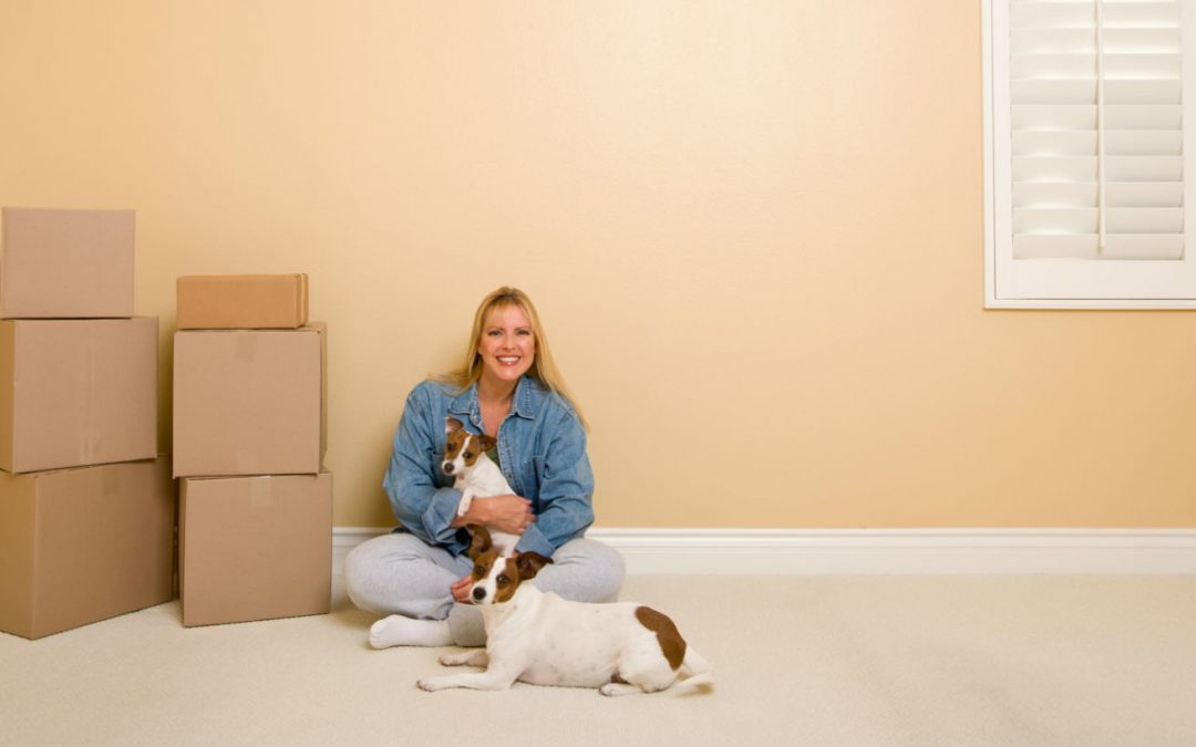 Tips for Moving House with Your Pets